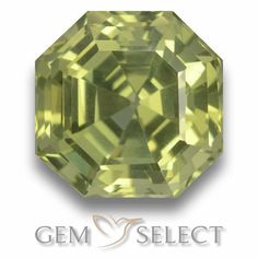 GemSelect features this natural untreated Apatite from Madagascar. This Green Apatite weighs 5.8ct and measures 9.9 x 9.8mm in size. More Asscher Cut Apatite is available on gemselect.com #birthstones #healing #jewelrystone #loosegemstones #buygems #gemstonelover #naturalgemstone #coloredgemstones #gemstones #gem #gems #gemselect #sale #shopping #gemshopping #naturalapatite #apatite #greenapatite #octagongem #octagongems #greengem #green Green Gemstones, Loose Gemstones, Natural Gemstones, Buy Gems, Asscher Cut, Gem S, Gemstone Colors, Madagascar, Shades Of Green