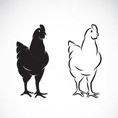 Vector image of an chicken by @Graphicsauthor