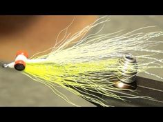 Trout Gone Wild: Top Streamers patterns for catching lot's of Trout (Streamer patterns that make big Trout Go Wild)   Montana Matt