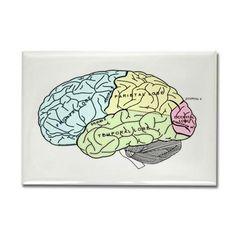 dr brain lrg Magnets on CafePress.com