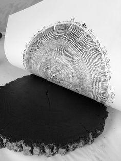 Ozark Mountains Oak, Tree ring Art Print, inches, Woodcut art print, Tree ring art by Erik Linton Ozark Mountains Eiche Baum Ring Kunstdruck 18 x 24 Zoll Missouri, Woodcut Art, Tree Rings, Oak Tree, Tree Art, Oeuvre D'art, Diy Art, Fairytale Weddings, Rustic Weddings