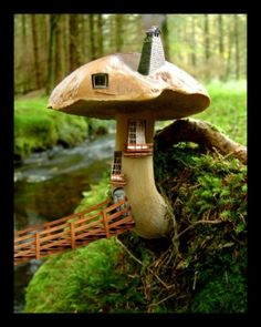 einem winzigen Pilz Haus, in dem kleinen winzigen Feen leben. by evamaria.ziller.5