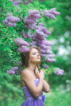 Lilac dreams - my lilac dreams...
