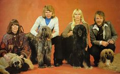 abba | ABBA - Complete Albums (DVD-AUDIO) - shellworks