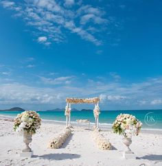 studioimpressionsThe most magical day yesterday here in @qualiaresort for #brittandlockwed The biggest congratulations to you both and all the amazing people around you. Such a privilege to be a part of your lives. #mynikonlife #qualia #hamiltonisland #whitsundays