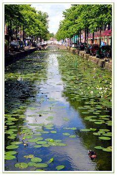 Delft, Zuid Holland, Netherlands Copyright: Rinie Hoff