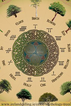 mandala Trees in Celtic Mythology: Trees were hugely significant to the ancient Celts. They believed different kinds of trees served different mystical purposes that helped them through their lives. Magick, Witchcraft, Celtic Symbols, Druid Symbols, Ancient Symbols, Mayan Symbols, Egyptian Symbols, Celtic Paganism, Celtic Druids