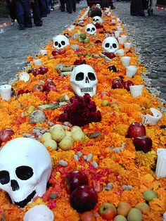 Trail of flower petals and fruit to guide the departed - Mexico