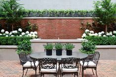 High-Rises and Hydrangeas: The Landscape Designers of Harrison Green on Creating Elegant Urban Gardens Townhouse Garden, Outdoor Spaces, Outdoor Decor, Backyard, Patio, Container Gardening, Urban Gardening, Gardening Tips, Tropical Plants