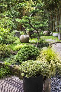 zen garden at home / home zen garden ` home zen garden backyards ` home zen garden ideas ` buddha statue home zen gardens ` buddha home decor zen gardens ` home made zen garden ` zen garden home interior design ` zen garden at home Japanese Garden Backyard, Small Japanese Garden, Japan Garden, Japanese Garden Design, Garden Types, Zen Garden Design, Landscape Design, Garden Statues, Garden Inspiration