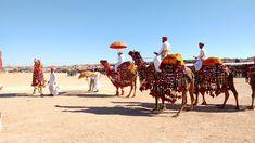 #2017 #blue sky #camel #camels #colourful #desert #desert festival #festival #folk #hot #hot colors #india #indian #jaipur #jaisalmer #kurta #men #mobile photography #no edit #no photoshop #rajasthan #rajasthan camels