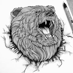 Amazing work with the Multiliner SP  'ANGRY BEAR', 2015  By Thiago Bianchini  @thiago_bianchini on Instagram