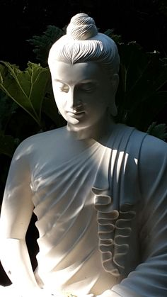 """""""Surrender is a journey from the outer turmoil to the inner peace."""" ~ Sri Chinmoy ॐ lis Giardino Botanico_ Gardone Riviera _ Italy"""