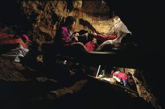 """Fossils from Spain's """"pit of bones"""" have yielded 430,000-year-old nuclear DNA that reveals Neanderthals in the making - and the need for a rethink over our origins"""
