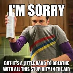 I'm sorry But it's a little hard to breathe with all this stupidity in the air  The Daily Life of Sheldon Cooper