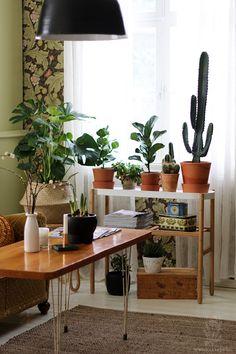 Αποτέλεσμα εικόνας για satsumas ikea Indoor Garden, Home And Garden, Bohemian Interior Design, Small Space Storage, Ikea Ideas, Plant Stands, Cozy Place, Blue Box, Home Decor Kitchen