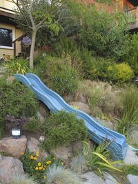 a garden playground - tips for gardening with kids