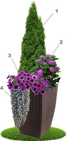 Outdoor Projects, Garden Projects, Container Plants, Container Gardening, Balinese Garden, Smart Garden, Backyard Garden Design, Ornamental Grasses, Garden Planters