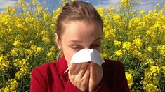 Allergic rhinitis occurs when the body's immune system overreacts to something it was exposed to. Learn what is allergic rhinitis, symptoms, diagnosis and allergic rhinitis treatment now. Allergies Au Pollen, Cure For Allergies, Spring Allergies, Natural Remedies For Allergies, Allergy Remedies, Seasonal Allergy Symptoms, Seasonal Allergies, Allergie Pollen, Insomnia