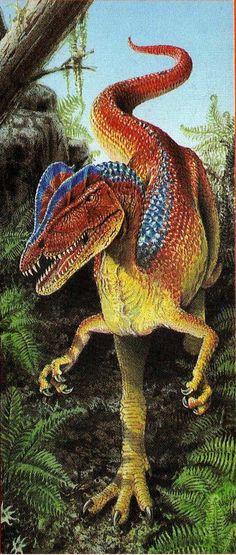 dilofossauro : Classification Règne Animalia Classe Sauropsida Ordre Saurischia Sous-ordre Theropoda Super-famille † Ceratosauria Famille † Dilophosauridae