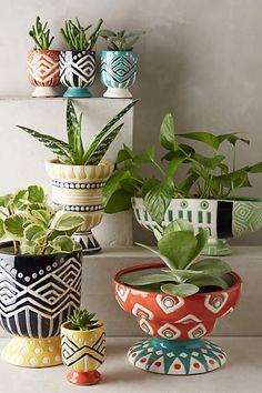 Anivalda Mini Garden Pot - anthropologie.com