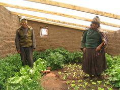 Terre - Social : Pour quelques 250 euros, il est possible de construire une serre souterraine qui vous permettra de jardiner toute l'année durant, malgré et au-delà du froid. Cette serre s'app