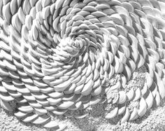 Simone Pheulpin, sculptures en textile, Artiste de tissu