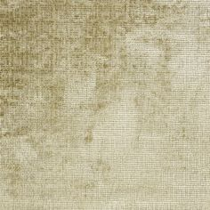 castellani - fawn fabric | Designers Guild Essentials