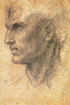 Andrea del Sarto - head of a man in profile facing left - before 1517, chalk