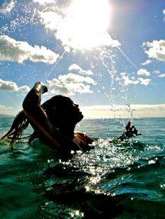 Nager dans l'océan ❤❤❤❤
