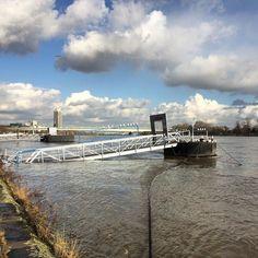 Hochwasser und Sonnenschein am Rhein #today #365koeln #thisiscologne #onmyway by ni_hundertmark #haxenhaus #people #food