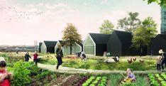 Nursery Fields Forever è il progetto di scuola materna dove si insegna a coltivare l'orto e rispettare l'ambiente, progetto italiano vincitore del concorso di AWR.