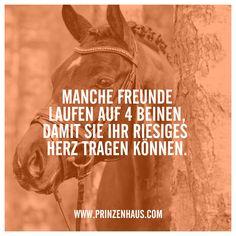www.prinzenhaus.com MANCHE FREUNDE LAUFEN AUF 4 BEINEN, DAMIT SIE IHR RIESIGES HERZ TRAGEN KÖNNEN.