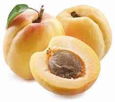 Apricots (prunus) are toxic to dogs and cats. If you suspect your pet has been poisoned call Pet Poison Helpline at Flea Shampoo For Cats, Toxic Plants For Cats, Angora Cats, Poisonous Plants, Fruit Seeds, All About Animals, Dog Safety, Pet Health, Health Tips