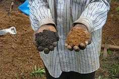 700 year old fertile soil technique could mitigate climate change and revolutionise farming across Africa
