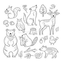 Woodland Cute Baby Animal Squirrel Wolf Owl Bear Deer Snail Childrens Sketch Vector Hand Drawn Stock Vector - Illustration of hand, icon: 139717084