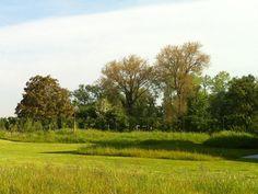 BURO BUITEN | Landschapstuin Schepdaal | Pieter Van Hauwermeiren | tuinarchitect | tuinarchitectuur | Landschapsarchitectuur