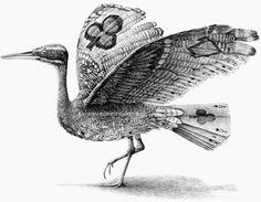 11-Poker-Heron-Redmer-Hoekstra-Surreal-Animals-Ink-Drawings-www-designstack-co