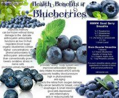 Benefits of Blueberries.