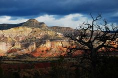 ghost ranch, new mexico by {carole}, via Flickr