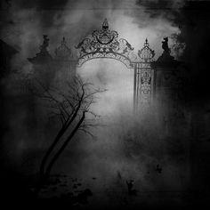 Creepyness.  I love fog.