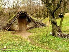 Pastoritul in Dobrogea Danube Delta, House Styles, Plants, Plant, Planets