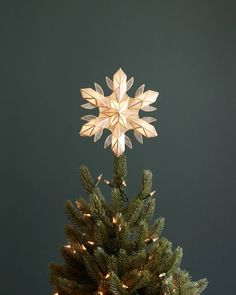 Add the perfect finishing touch to your tree with our handcrafted Capiz Snowflake Tree Topper. Available on Balsam Hill today. Christmas Tree Star, Beach Christmas, Christmas Door, Holiday Tree, Christmas Tree Toppers, Christmas Lights, Christmas Holidays, Christmas Stuff, Lighted Tree Topper