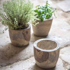 Looking for a stylish pot to plant up in the conservatory or pop on the kitchen windowsill?Light weight and made from paulownia wood known for its fine grain, the Bothy Pot is finished in a grey wash and has bags of rustic charm. It also boasts a waterproof seal making it the perfect plant pot for houseplants or herbs in the kitchen. Please note, each bowl is individually handmade therefore there may be slight variations in the size, and natural imperfections to the wood.Individually…