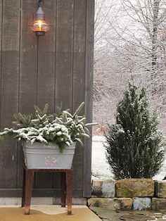 A large galvi tub full of pine and topped off with snow...very prim and pretty!