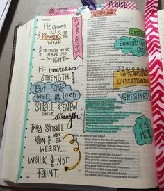 Isaiah 40:31 bible journaling illustrated faith
