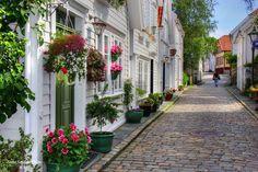 old Stavanger City Stavanger, Greenland Iceland, Garden Windows, Garden Plants, Interior And Exterior, Places To See, Norway, Paths, Art Photography