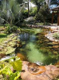 PISCINA NATURAL- designed by Peter Nitsche, with large, smooth granite boulders and a sandy bottom - surrounding landscape design is Rose Kliass (in Preta Beach, Cape Verde). Small Pool Design, Pond Design, Landscape Design, Garden Design, Design Design, Pond Landscaping, Ponds Backyard, Backyard Ideas, Garden Ponds