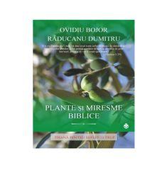 plante si miresme Metabolism, Green Beans, Herbs, Vegetables, Health, Testament, Medicine, Buxus, Plant