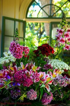 A huge bunch of garden-fresh flowers - fragrant sweet william, snapdragons, lilies, queen anne's lace. My Flower, Fresh Flowers, Beautiful Flowers, Cactus Flower, Exotic Flowers, Purple Flowers, Bright Flowers, Tropical Flowers, Hawaiian Flowers